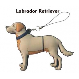 Memoria USB HT Animales 8GB DOG Labrador Retriever
