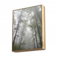 Altavoz Bluetooth Energy Frame 50W Forest