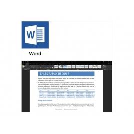 Microsoft Office 2019 Profesional PKL ESD Descarga
